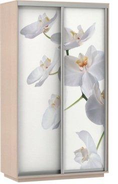 Экспресс фото Белый цветок. от 13490 рублей